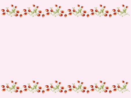 Wild strawberry 3