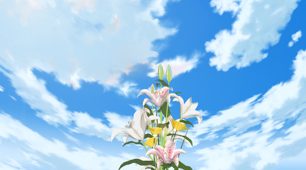 Sky and flowers