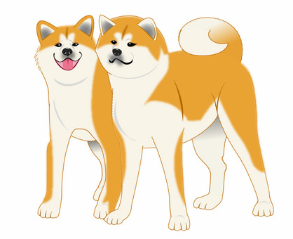 Akita dog pair illustration 01