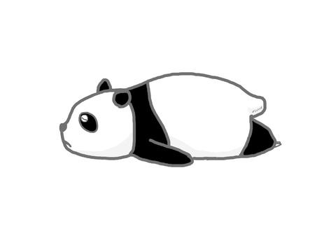 Pandaner 02