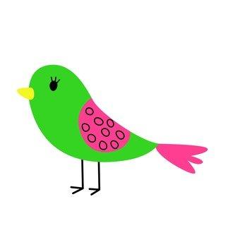 Green bird 3