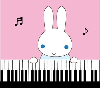 Piano rabbit