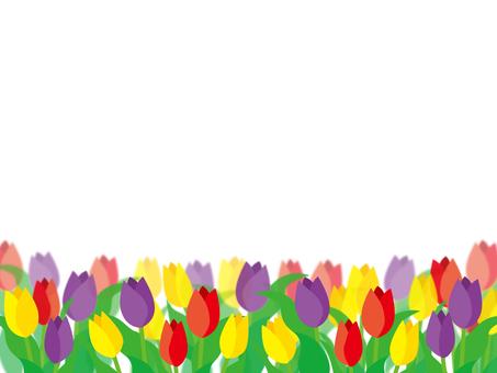 Tulip flower bed no glitter
