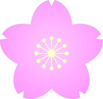 Sakura ② Petals