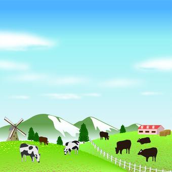 牧場 酪農