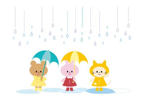 Rainy season - animals -