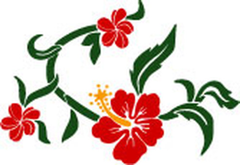 Aloha pattern 3 color