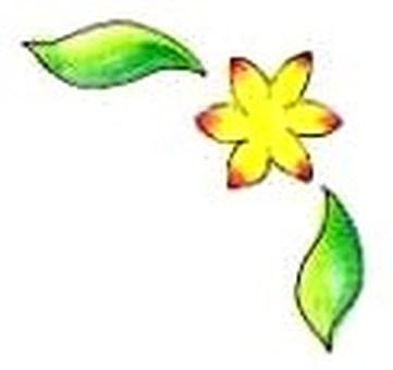 card : 꽃 ②