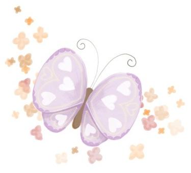 蝴蝶和小花*小