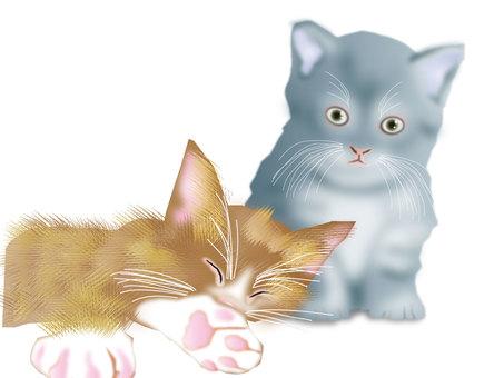 Kittens 02