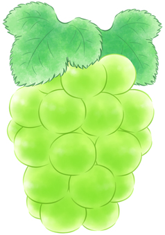 Round green grapes with leaves