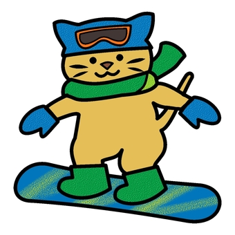 Snowboarding cat color
