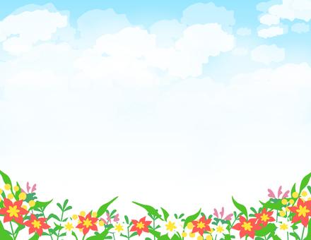 草花2_花と空