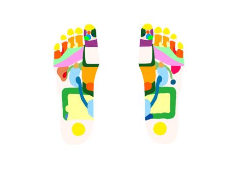Foot - Reflective Area Figure Contour None