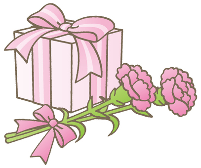 Carnation and gifts - B