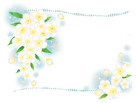 プルメリアの花フレーム