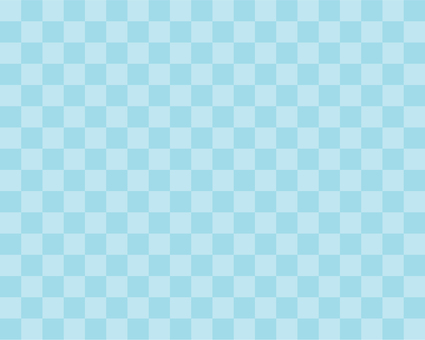 Thin two color check - light blue