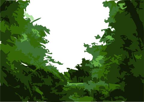 森林的形象