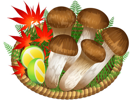 Salwa matsutake mushroom icon