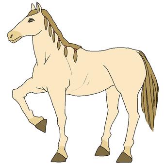 말 / 흰색
