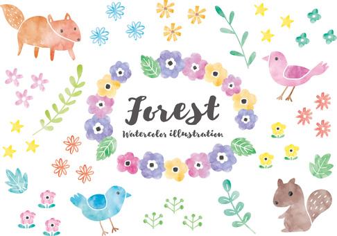 Forest animal illustration