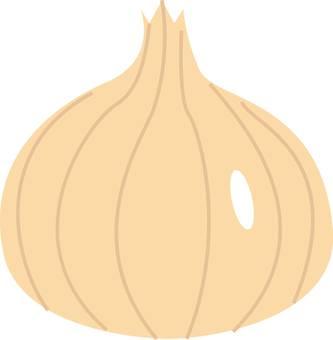 Onion, onion
