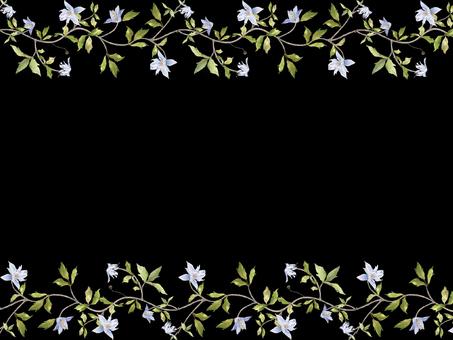 花框架422鐵線蓮花框架