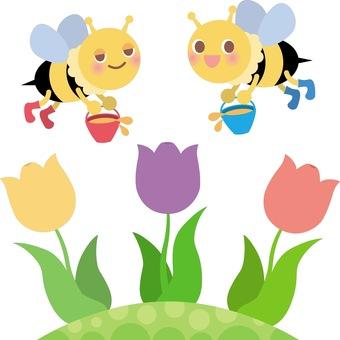 꿀벌과 튤립