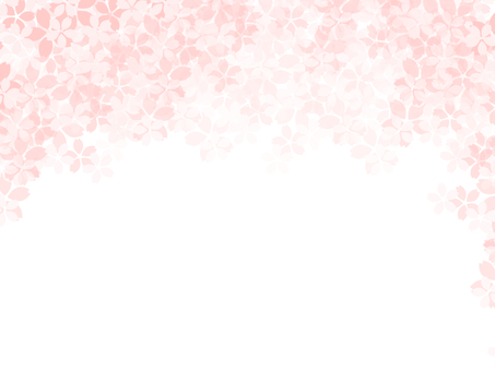 Cherry blossoms.10