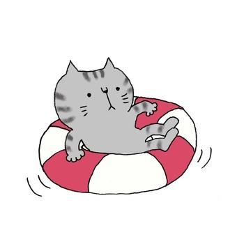 Floating ring puka puka cat