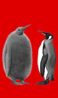 Penguin red back