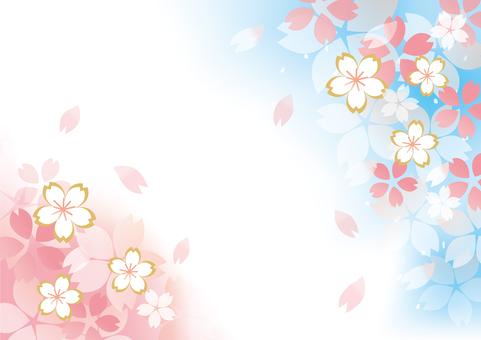 Cute cherry blossoms