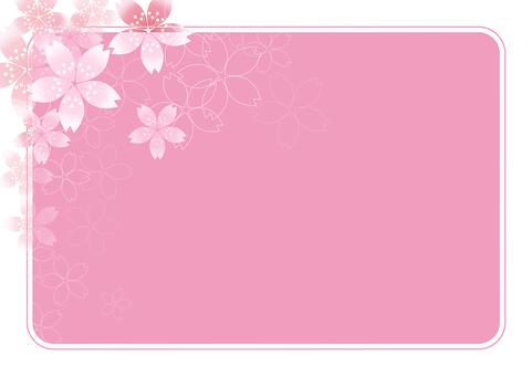 Sakura Sakura & Board 38