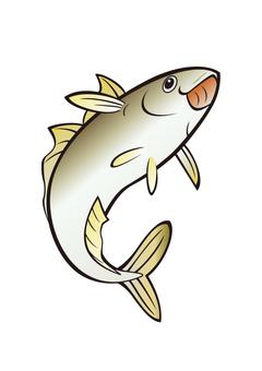 Fish _ Aji