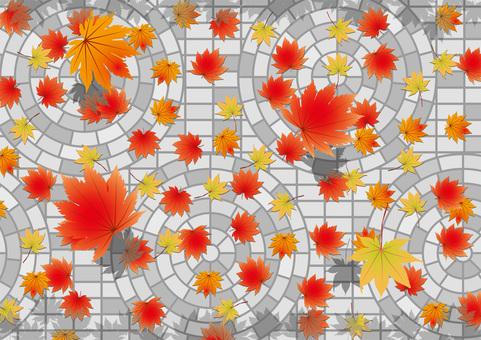 Cobblestones and autumn leaves