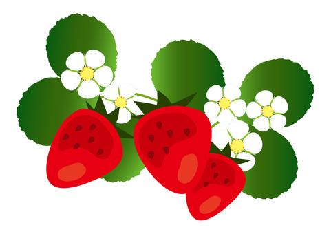 Strawberry background 1