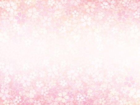 Cherry blossom background material