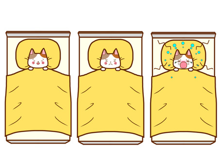 Sleeping cat facial expression set