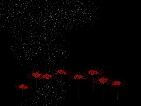 눈 속에서 피안 꽃