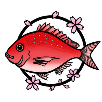 Red sea bream (with cherry blossoms)