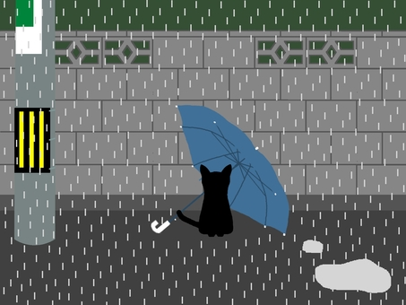 Cat with a gentle umbrella and waiting for something