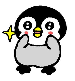 Kirarin penguin chick