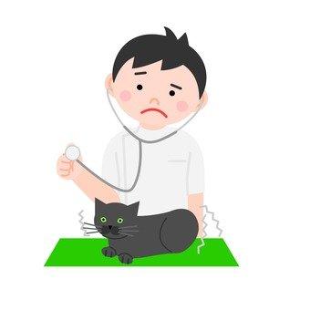 Cats examination