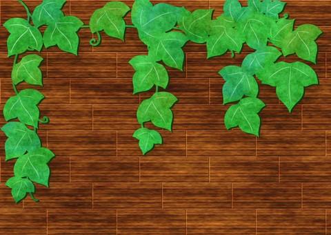 Ivy leaf background