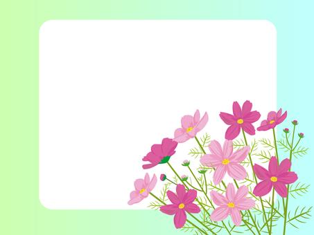 Cosmos card frame