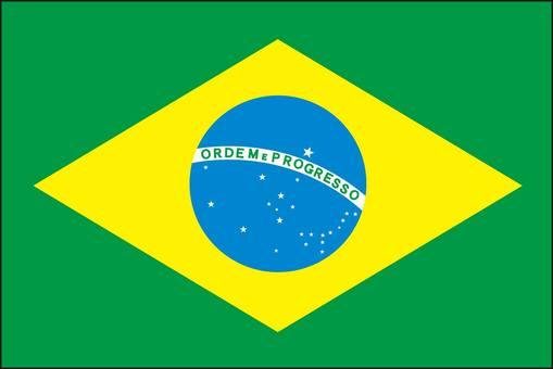 Brazil flag South America country