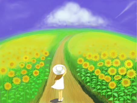 여름 풍경 해바라기 언덕과 소녀