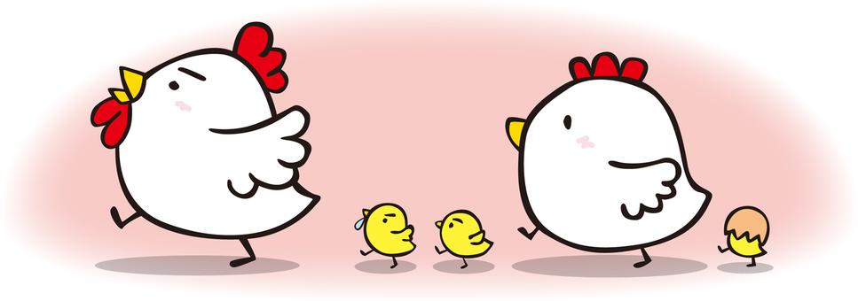 Chickens 02