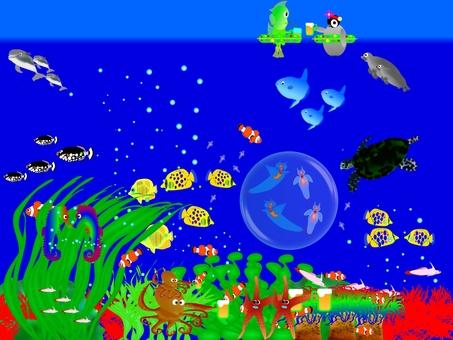 加入海龜玩水族館