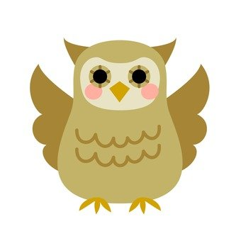 Owl, brown
